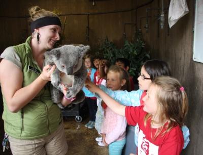 Avery and koala at zoo camp